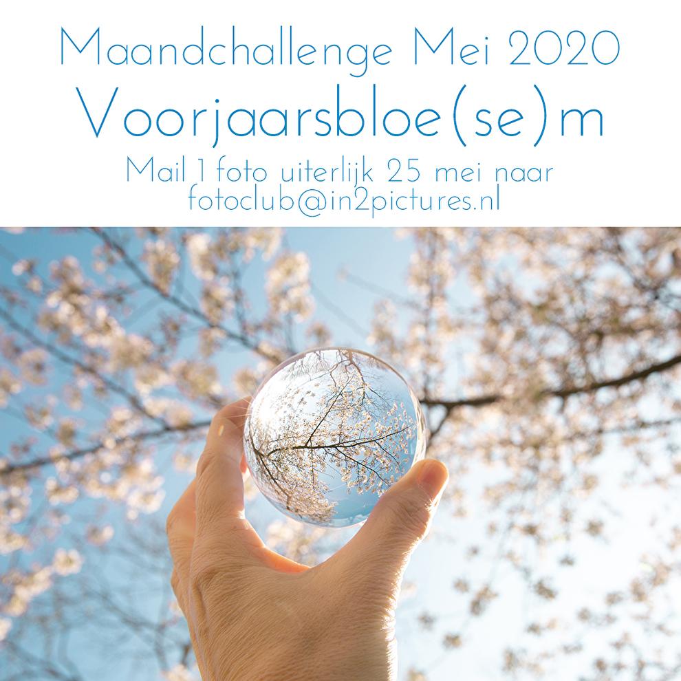Maandchallenge Mei 2020 - Voorjaarsbloesem in2pictures.nl fotografie