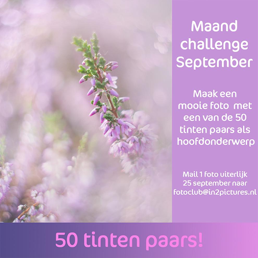 maandchallenge in2pictures.nl fotografie 50 tinten paars