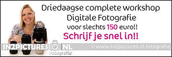 WS-Driedaagse complete workshop.jpg