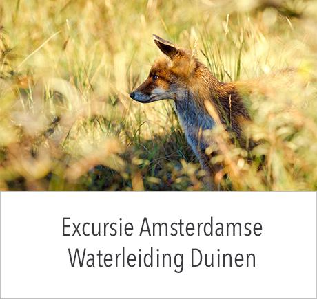 Fotografie excursie door de Amsterdamse Waterleiding Duinen (AWD)
