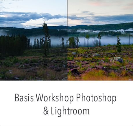 Basis workshop Beeldbewerking met Photoshop en Lightroom