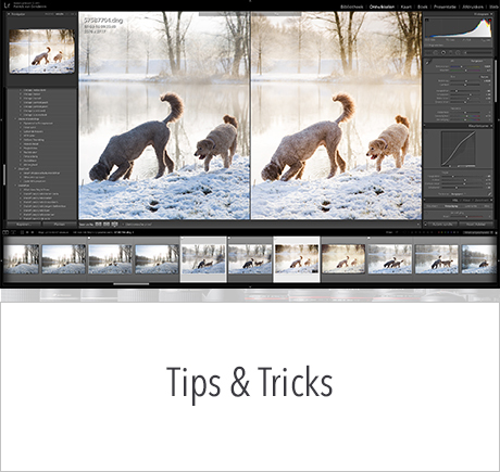 in2pictures.nl fotografie Tips en Tricks