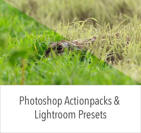 Adobe Photoshop actionpacks en Lightroom presets