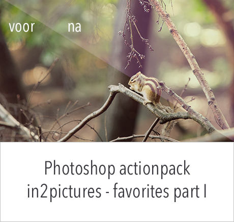 Actionpack Photoshop in2pictures.nl fotografie - favorites part I