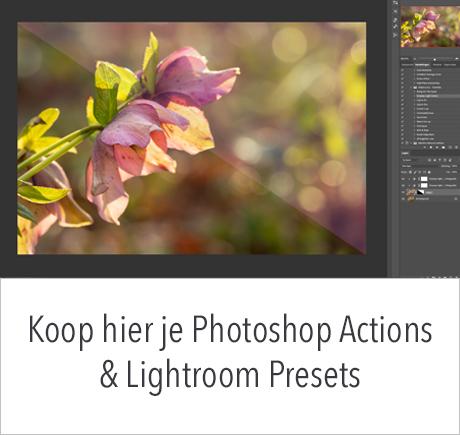 Koop hier je Lightroom presets en Photoshop Actions