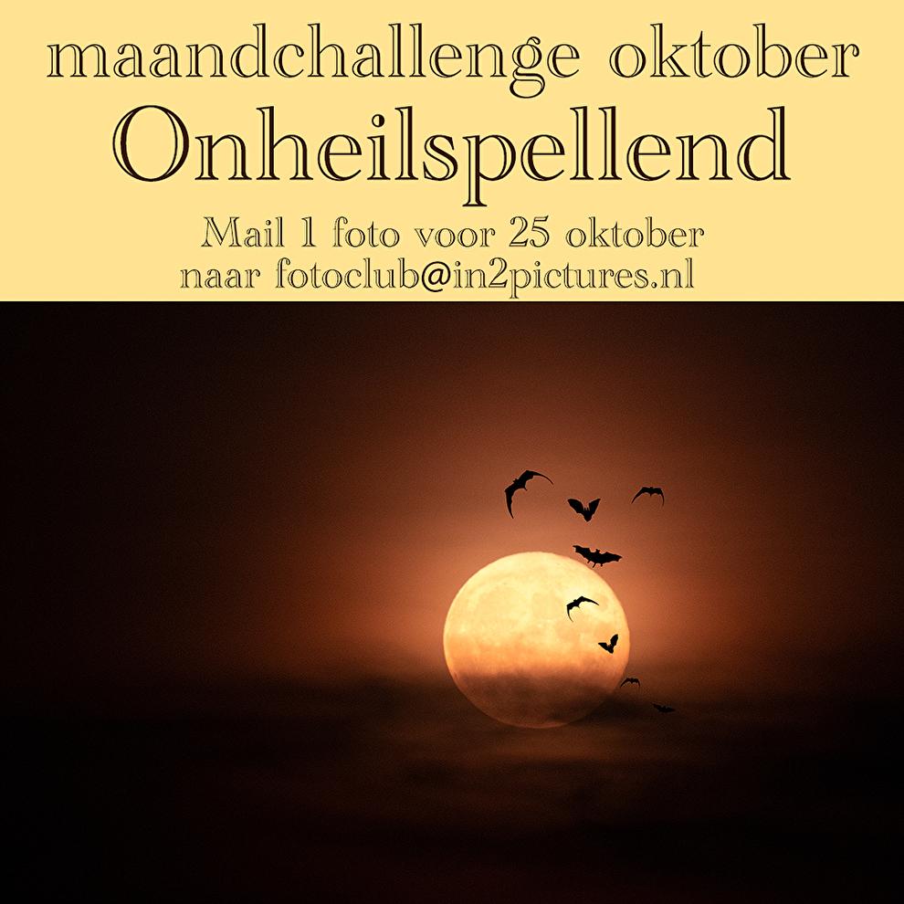 maandchallenge in2pictures.nl fotografie, challenge, wedstrijd, fotowedstrijd,