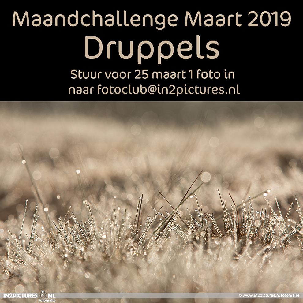 Maandchallenge digitale fotografie wedstrijd uitdaging druppels