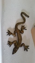 Oud bronzen salamander