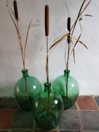 Gistfles groot groen