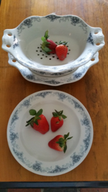 Fruittes schaal en 10 bordjes