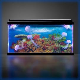 Aquarium led met 7 kwallen groot