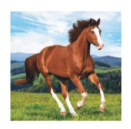 Paarden servetten 16 stuks 25x25cm