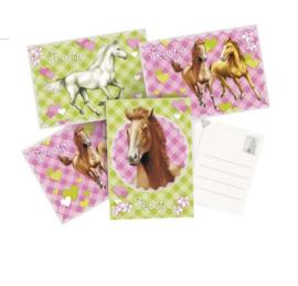 Paarden uitnodigingen 6st