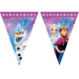 Frozen slinger vlaggenlijn plastic 2,3m