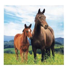 Paarden servetten 16 stuks 33x33cm