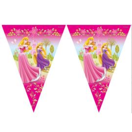 Prinsessen vlaggenlijn 2,3m