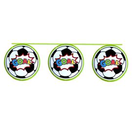 Voetbal vlaggenlijn 10m
