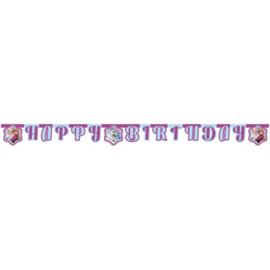 Frozen letterslinger Happy Birthday 1,8 m