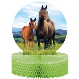 Paarden versiering tafel  30x22cm