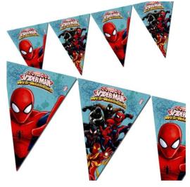 Spiderman vlaggenlijn plastic 2,3m