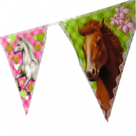 Vlaggenlijn paarden 6 meter
