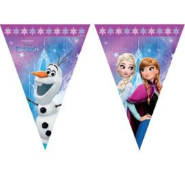 Frozen vlaggenlijn plastic 2,3m