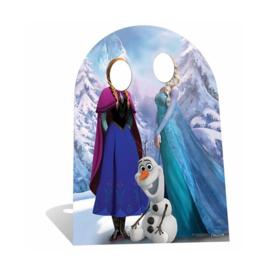 Frozen foto versiering staand 1,27m