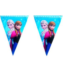 Frozen vlaggenlijn 5m