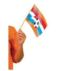 Zwaaivlaggetje oranje voetbal 26x18cm