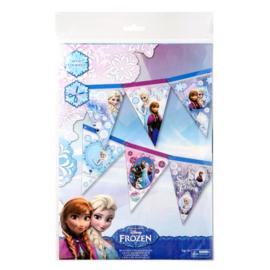 Frozen Maak je eigen vlaggenlijn