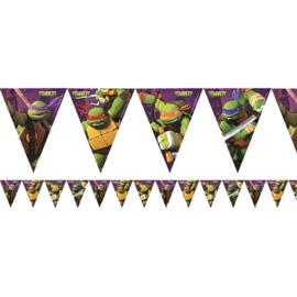 Ninja Turtles vlaggenlijn 3,7m