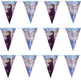 Frozen 2 slinger vlaggetjes 2,3m