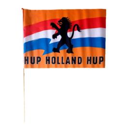 Hup Holland Hup zwaaivlag 45x30cm