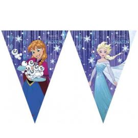 Frozen Snowflakes vlaggenlijn 230cm