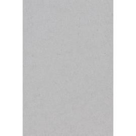 Plastic tafelkleed zilver 137x274cm