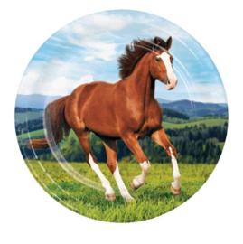 Paarden borden 8 stuks 23cm
