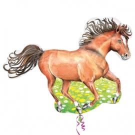 Paard folie ballon 70cm