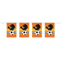 Vlaggenlijn oranje leeuw voetbal 10m