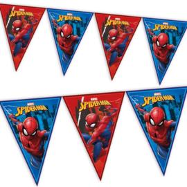 Spiderman vlaggenlijn 2,3m plastic