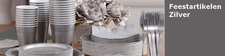 Feestartikelen kleur zilver