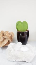 Bergkristal waxinelicht-houders