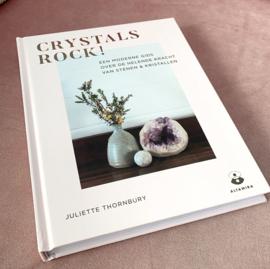 Boek: Crystals Rock!