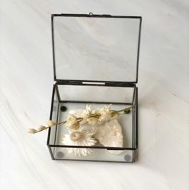 Box for your Rocks Zwart met deksel