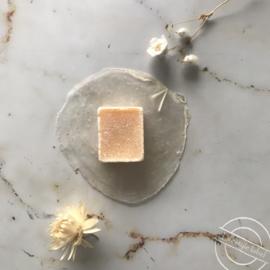 Schelp met amberblokje