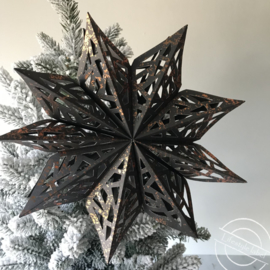 Ornament ster groot