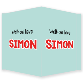 Geboortebord - Geboortebord raam mint met rode letters type Simon