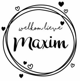 Geboortesticker hartjes met cirkels type Maxim