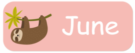 Naamstickers kind met een luiaard type June