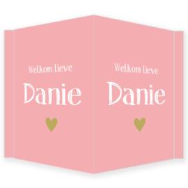 """Geboortebord meisje - Geboortebord raam met de tekst """"welkom lieve"""" type Danie."""