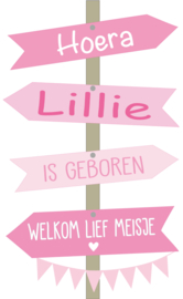 Geboortesticker full colour met geboortebord type Lillie
